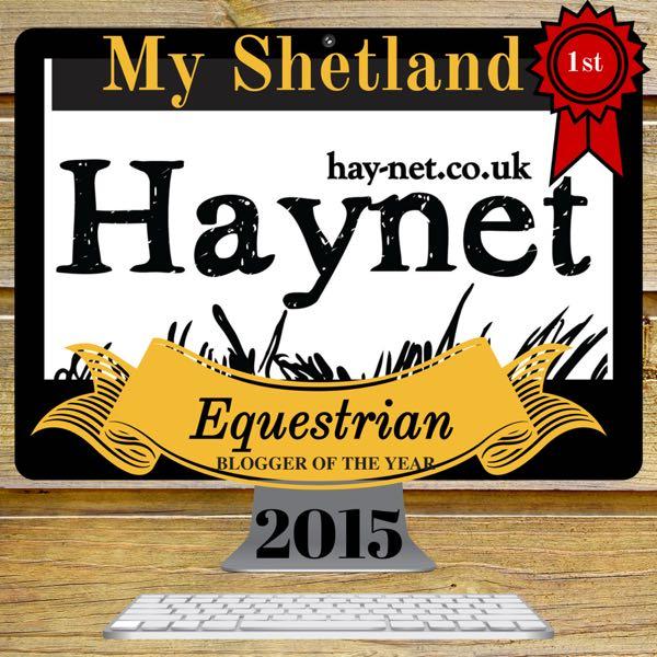 Haynet Blogger of the Year 2015 Winner Badge